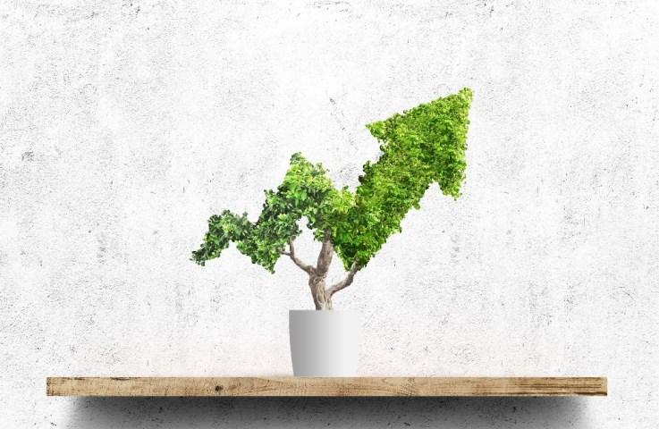 10 inspirerende bæredygtigheds-citater
